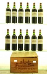Les Pagodes de Cos (2nd wine Cos d'Estournel) 2008 St Estephe