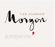 Domaine Jean Foillard, Morgon Eponym 2017 Morgon