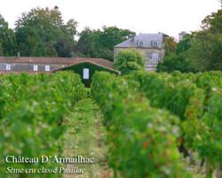 Chateau d'Armailhac 2019 Pauillac