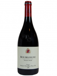 Domaine Robert Groffier, Bourgogne Pinot Noir 2019 Cote de Nuits